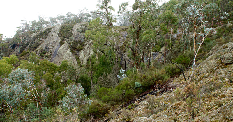 The Walls, Mt Canobolas April 2016